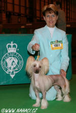 Kitty z Haliparku na Crufts 2008 !!!